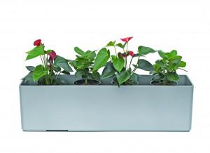 Basic Gefäße 100 cm x 22 cm x 22 cm inklusive Hydro Profi Line System für Hydrokulturen