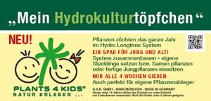 Hydrokulturtöpfchen
