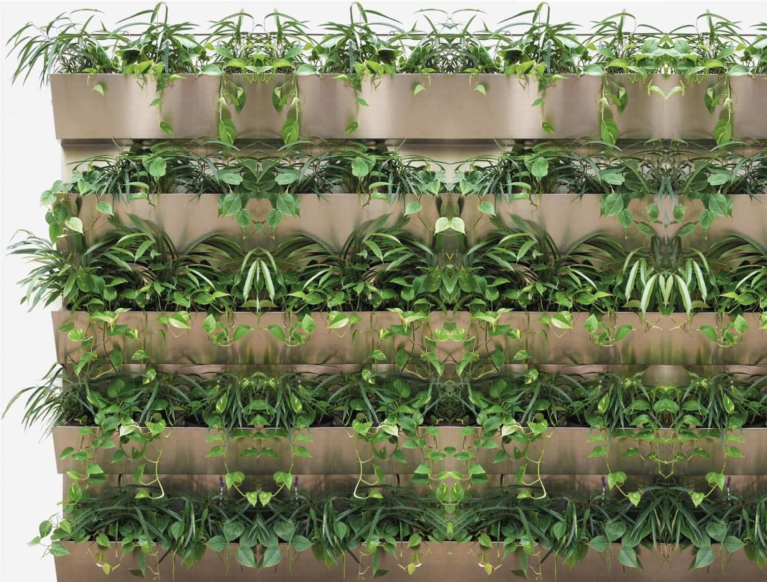 Grune Wande Fur Hydrokulturpflanzen Hydro Profi Line