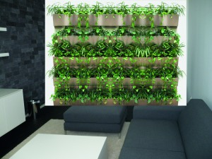 Gruene Wand mit Hydro Profi Line System