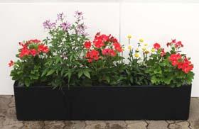 Basic 100 cm x 22 cm Balkonkasten inklusive Hydro Profi Line Pflanzsystem für Freilandpflanzen