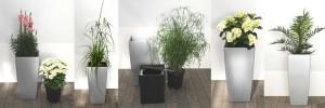 Hydro Profi Line® Pflanzsysteme sind auch für vorhandene Lechuza® Pflanzgefäße erhältlich.
