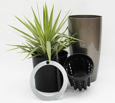topf-in-topf-erdpflanzen